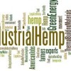 industrial hemp uses