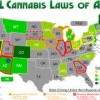 an analysis of the medical and recreational use of marijuana in america